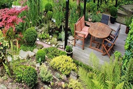 speciale giardino i protagonisti della bella stagione