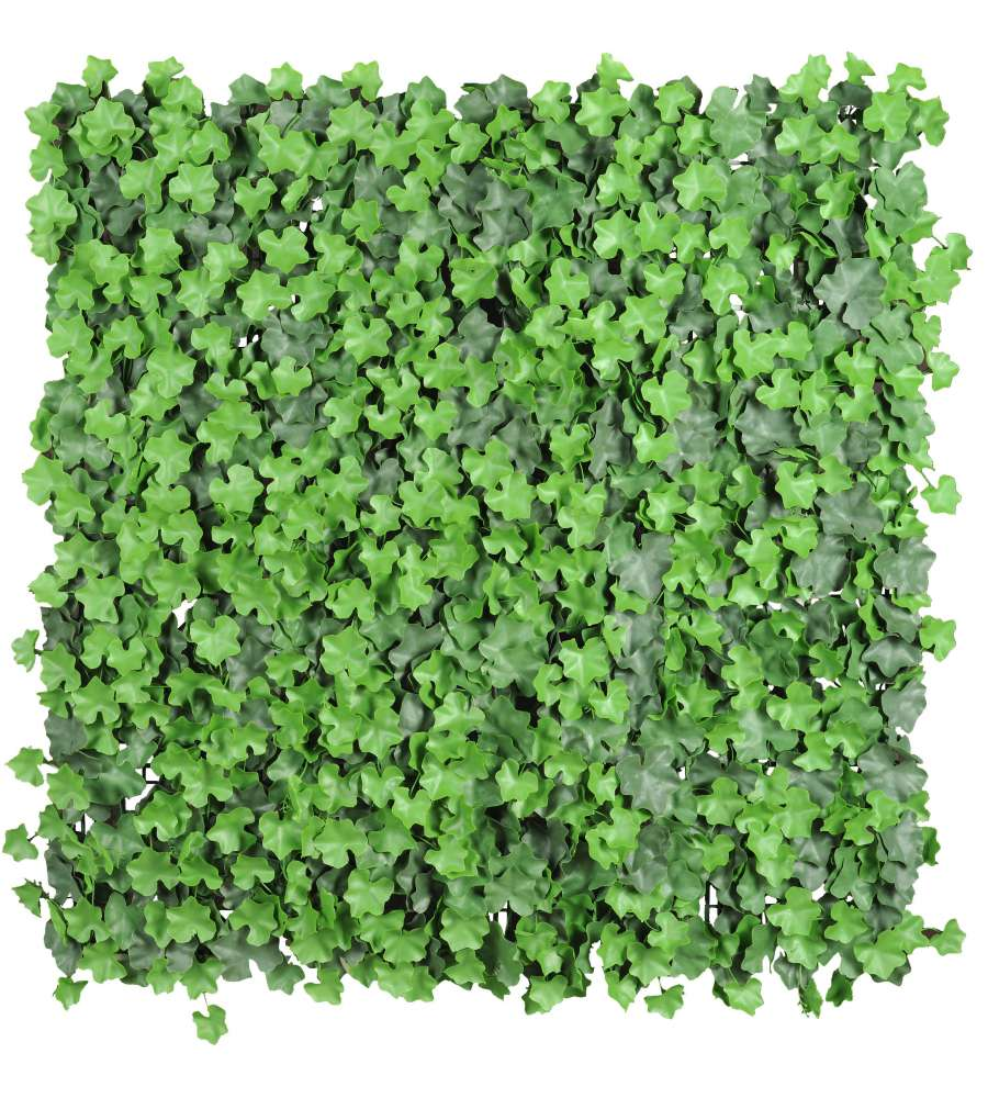 Edera artificiale sempreverde 4 pezzi da 50x50 cm for Edera sempreverde