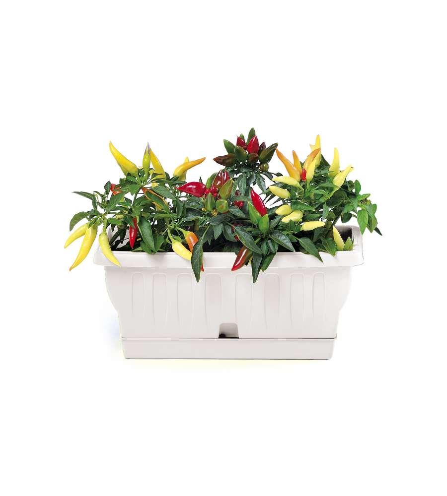 Vaso rettangolare 30 cm colore bianco for Vaso rettangolare