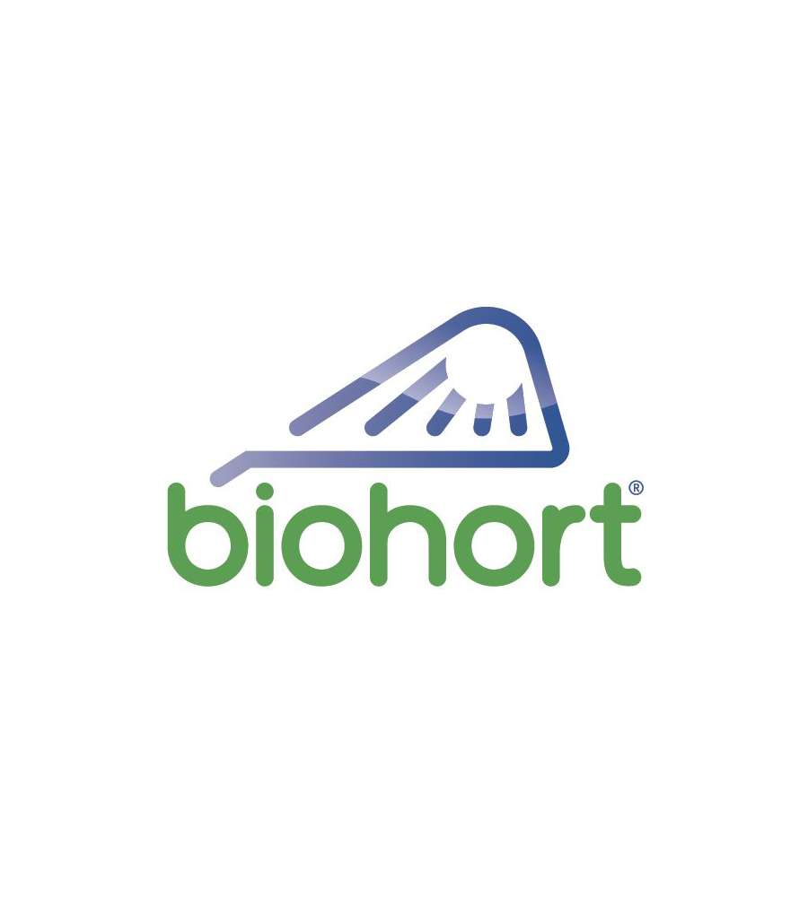 biohort casetta highline h5 in acciaio zincato grigio quarzo con porta a due battenti 275 x. Black Bedroom Furniture Sets. Home Design Ideas