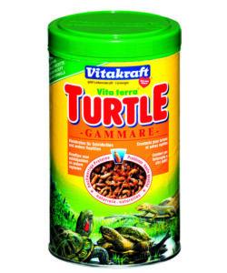 Acquariologia for Pellet per tartarughe