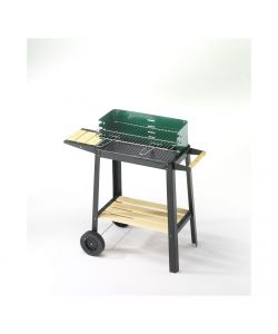BARBECUE A CARBONE 50X25 GREEN - OMPAGRILL